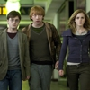 Warner Bros. To Quit Shipping <i>Harry Potter</i> DVDs in December