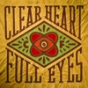 Craig Finn Announces <i>Clear Heart Full Eyes</i> Release