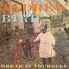 Andrew Bird: &lt;i&gt;Break It Yourself&lt;/i&gt;