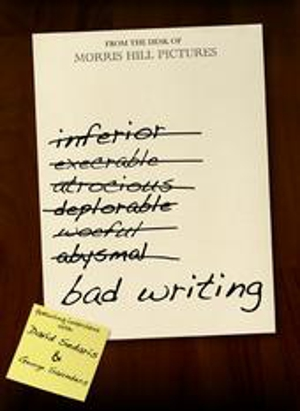 <i>Bad Writing</i> Documentarians Talk Advice, Inspiration