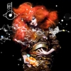 Bjork Pushes Back <i>Biophilia</i> to October