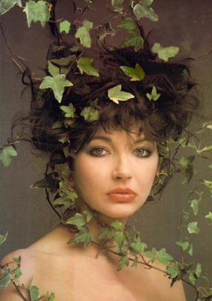 Kate Bush Working on New Record