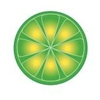 LimeWire Deemed Illegal, Shut Down
