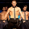 <i>Magic Mike</i>