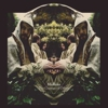 Midlake: <em>The Courage of Others</em>