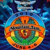 2010 Mountain Jam Festival to Feature Ray LaMontagne, Dr. Dog, Alison Krauss &amp; Union Station, More