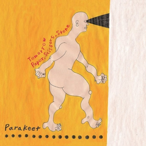 Listen to Yuck Side-Project Parakeet's New Single