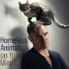 Morrissey Appears in PETA Ad With Cat on His Head