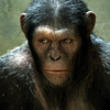 Fox Confirms Sequels to <i>Rise of the Planet of The Apes</i> and <i>X-Men: First Class</i>