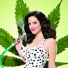 Showtime Renews <i>Weeds</i> for Eighth Season