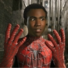 &lt;em&gt;Community&lt;/em&gt;'s Donald Glover Campaigns for Spider-Man Role