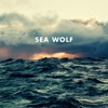 "Listen to Sea Wolf's New Song ""Old Friend"""
