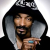 Snoop Dogg Banned From Norway for Two Years Following Marijuana Possession Charges