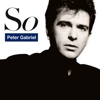 Peter Gabriel Announces <i>So</i> 25th Anniversary Tour