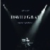 David Gray - Live In Slow Motion [iht]