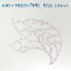 Dirty Projectors: Rise Above