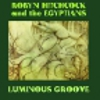 Robyn Hitchcock and The Egyptians: <em>Luminous Groove</em>