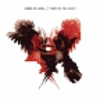 Kings of Leon: <em>Only By The Night</em>
