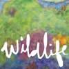 Headlights: <em>Wildlife</em>