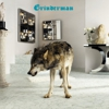 Grinderman: &lt;em&gt;Grinderman 2&lt;/em&gt;