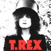 Fat Possum Poised to Re-Release Slew of T. Rex Albums