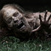 Watch Five Minutes of <em>The Walking Dead</em>