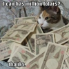 Lolcats and Fails Attract Huge Money