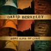 David Berkeley: &lt;i&gt;Some Kind of Cure&lt;/i&gt;