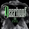 Deerhoof: <i>Deerhoof vs. Evil</i>