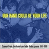 Ted Leo, St. Vincent, Wye Oak to Play Our Band Could Be Your Life Concert