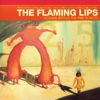 The Flaming Lips' &lt;em&gt;Yoshimi&lt;/em&gt; Theatrical Show in Early Production Stages