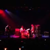 Watch Dave Grohl, Eddie Vedder, Pat Smear Join Mike Watt for 'Big Train'