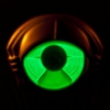 My Morning Jacket: &lt;i&gt;Circuital&lt;/i&gt;