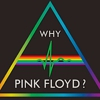 Assessing a Legacy: <i>Why Pink Floyd?</i> Reissue Series