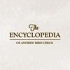 Infographic: The Encyclopedia of Andrew Bird Lyrics