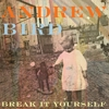 Video Premiere: Andrew Bird &lt;i&gt;Break It Yourself&lt;/i&gt; Preview
