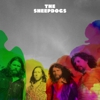 Video Premiere: The Sheepdogs Record New LP with The Black Keys' Patrick Carney