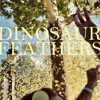 "Song Premiere: Dinosaur Feathers - ""Untrue"""