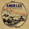 Album Stream: Amos Lee - <i>As The Crow Flies EP</i>
