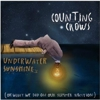 Counting Crows - &lt;i&gt;Underwater Sunshine&lt;/i&gt; Track By Track