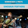 "Live From SXSW: Dinosaur Feathers - ""Vendela Vida"""