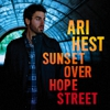 Free MP3: Ari Hest - &quot;Business of America&quot;