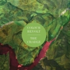 Free MP3: Colour Revolt - &quot;Moat&quot;