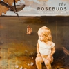 "FREE MP3: The Rosebuds - ""Woods"""