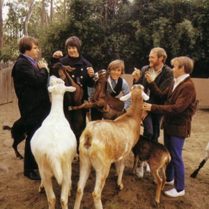 The 25 Best Beach Boys Covers