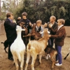 The 20 Best Beach Boys Songs