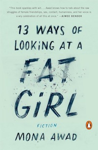 1. 13 ways of looking at a fat girl.jpg