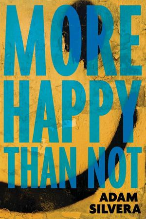 Image result for more happy than not book