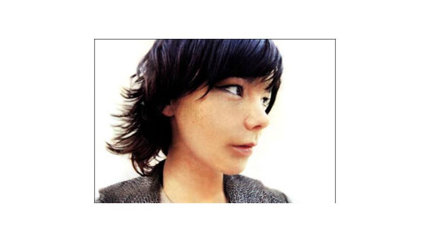 Björk: Björk - Miniscule (DVD Review)