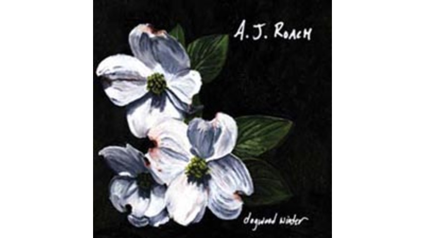 A.J. Roach - Dogwood Winter